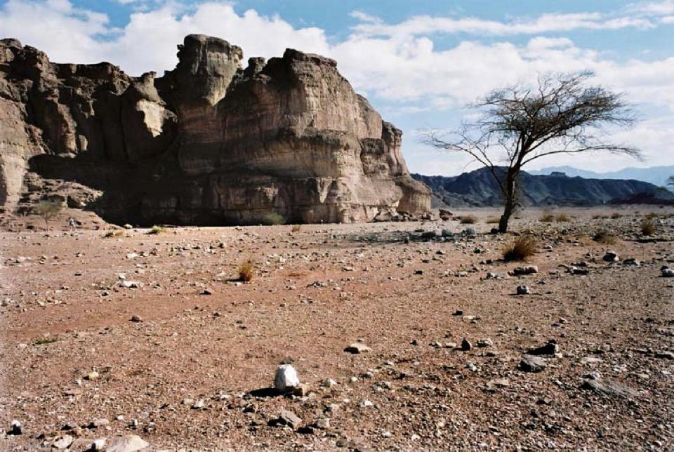 Een mens die op een ander mens vertrouwd is als een kwijnende boom die staat te verpieteren in een steenwoestijn.